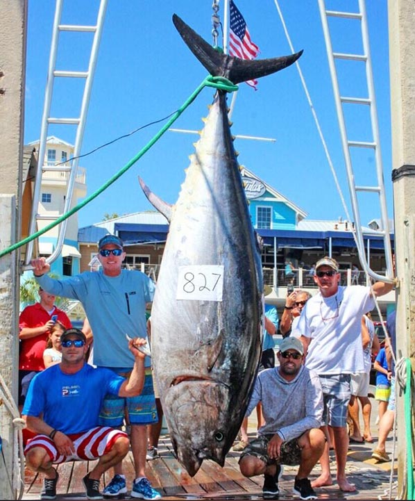 Bluefin tuna record